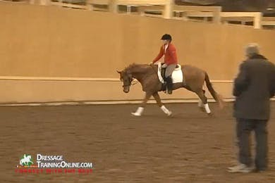 Mr. Hess explains why it is important for the horse to have the clear rhythm in the canter, and then go on to try the flying changes.  To prepare for them, they do many walk trot transitions. by Dressage Today Online