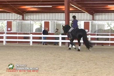 Ms. McDonald requires a steadier connection with this gelding bending around the right leg of the rider.  There are useful tips on balance in a young horse, and how they get the rider to hold them up. by Dressage Today Online