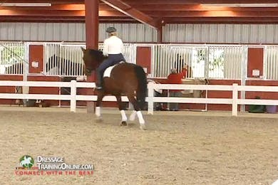 Debbie McDonald - Feel and Contact - Part 2 by Dressage Today Online