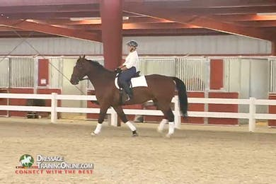Debbie McDonald - Feel and Contact - Part 3 by Dressage Today Online