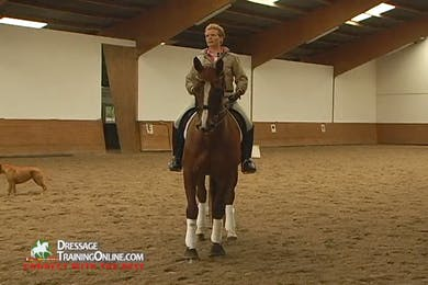 Katrin Bettenworth - Moving Up From PSG, Part 1 by Dressage Today Online