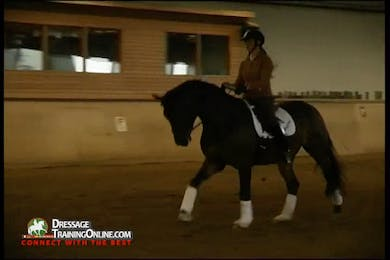 This segment begins with the simple change with good tips on how to correct him when he gets too strong.  They demonstrate using the haunches in on a circle at the canter to get him to jump more from behind. by Dressage Today Online