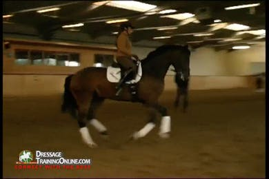 The canter work continues with a single change, making sure that the quality of the canter is correct for the change.  Mr. Gmoser gives excellent instruction on starting the changes and how to deal with a horse who anticipates the changes. by Dressage Today Online