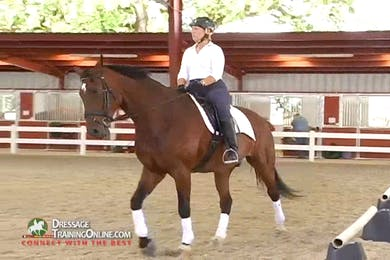 Ms. McDonald asks the rider to be aware of whether the horse is running through the hand in the walk halt transitions. by Dressage Today Online