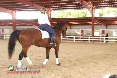 At the walk, the work on keeping the contact when the horse becomes a little fussy.  As this improves, they move to the trot. by Dressage Today Online
