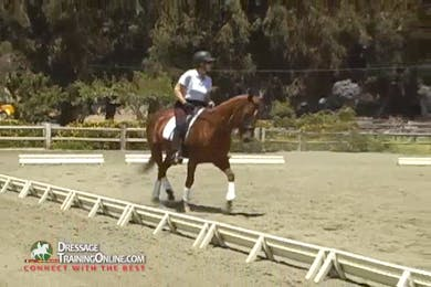 In this segment they work on moving their hands in both the trot and canter in rhythm with the gait.  The horses become more flowing as the riders gain this insight into their straightness and balance. by Dressage Today Online