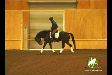 Video 2: Intermediare 1/S Level/Advanced- This horse is severly behind the vertical and ducking behind the bridal by Dressage Today Online
