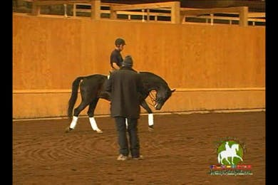Video 2: Intermediare 1/S Level/Advanced- Here they focus on canter transitions, where the horse is notoriously tense and bucky into the transitions. They work for a long time to relax the horse before they can think about moving into something else.  by Dressage Today Online
