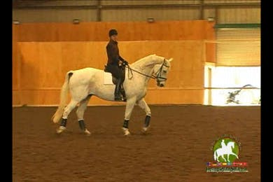 Video 3: 2nd Level/Elementary- Horse starts off high in the neck, Christoph has her use the inside leg to get him to develop a better poll and neck position and relax into it. by Dressage Today Online