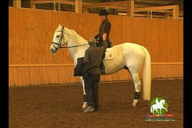 Video 3: 2nd Level/Elementary- Christoph has the rider do exercises to get a better half pass. He very much emphasizes the importance of the inside leg to also get correct bend. Begin canter work.  by Dressage Today Online