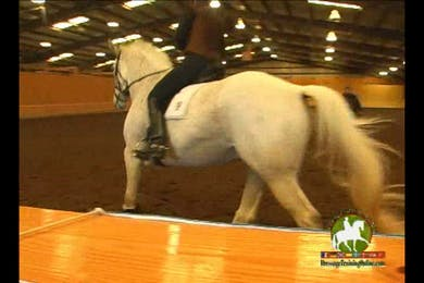 Video 3: 2nd Level/Elementary- Canter work, focus on bend with inside beg and body. by Dressage Today Online