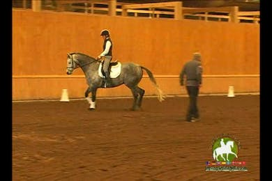 Video 4: Training Level Basics by Dressage Today Online
