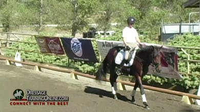 Dr. Schule gives his score for the walk and the reasoning behind it.  They next look at the canter and talk about the temperament.  The qualities that would be needed for the four year old test are discussed. by Dressage Today Online