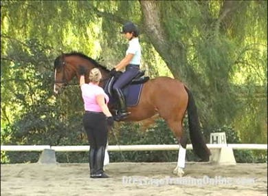 Video 1: Hilda shows you on three horses with different riders and at different levels how she trains this upper level movement. by Dressage Today Online