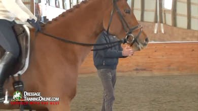 This five year old mare shows resistance to the contact, and Dr. Möller gives great instruction on the basics of feeling the mouth with both reins.  by Dressage Today Online