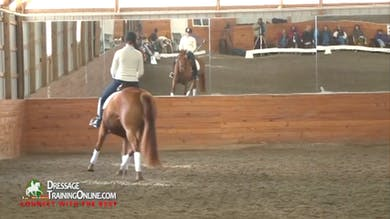 They move on to the canter with resistance still shown, and continue to ask the horse to move forward with contact.  The trot after the canter shows improvement. They reverse and canter the other direction. by Dressage Today Online