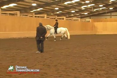 Video 3: They work on leg yielding on the circle to create the connection between the inside leg and outside rein, and return to the circle in the corner, shoulder in and half pass exercise. by Dressage Today Online