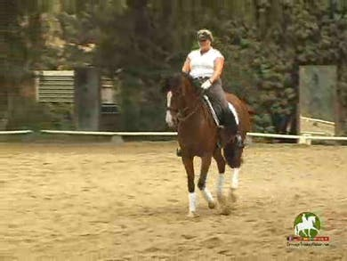 Video 4: Rubberband exercises in the canter are used before moving into tempi changes. This horse does nice changes with a slight tendency to climb, so Hilda asks the rider to use light and tactful aids, very soft hips, to alleviate this issue.  by Dressage Today Online