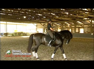 The walk exercise continues and with success they go to the walk pirouette, keeping it slow and collected.  They go from the walk to canter pirouette with this sensitive stallion, and Juan helps them work through some tension. by Dressage Today Online