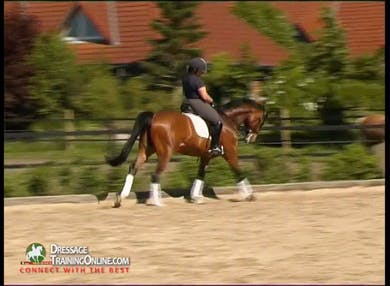 Catherine Haddad brings Pentimento, who has been seen in earlier videos  He is now six, and in Double Bridle. canter pirouette without compromising his balance. by Dressage Today Online
