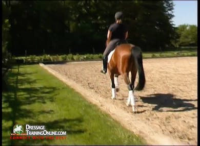 This segment begins with the collected trot, and from that they ask for a bit more bounce resulting in more lift and passage. by Dressage Today Online