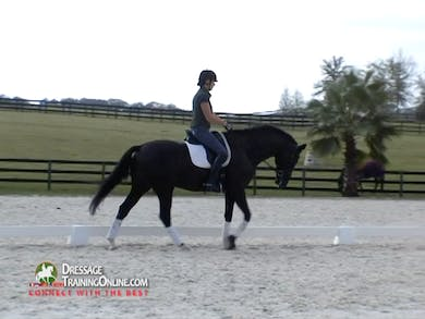 This segment begins with an important explanation of what is important to look for in a good pirouette. There are many valuable insights into how to improve the pirouettes. by Dressage Today Online