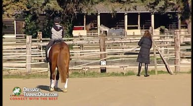 In this training session, Alizee asks Audre on her four year old to begin at the walk and work on flexion, always working with a giving hand and the inside leg by Dressage Today Online