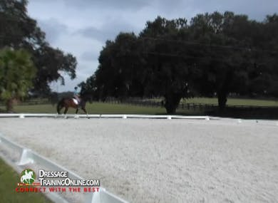 As they canter to the right, Mr. Steiner asks the rider to give the horse more help and use the shoulder fore position. by Dressage Today Online
