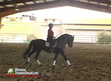 They begin with a beautiful canter left, working with transitions within the gait. by Dressage Today Online
