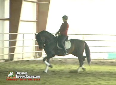 Dani asks them for passage steps from the trot.  When they move to the canter, they show an excellent example of collection. by Dressage Today Online