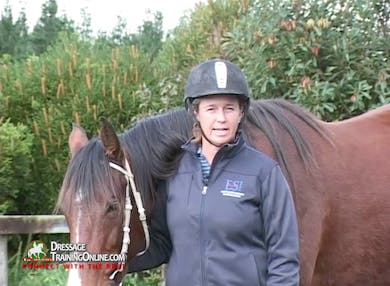 Jody brings us through the steps of groundwork beginning with habituating this mare to using a whip while on the ground to ask for moving forward and backwards. She demonstrates training to ask the horse to stand still. by Dressage Today Online