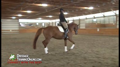Dr. Möller teaches this lesson on a six year old by beginning with an emphasis on being straight, and starting the turn with the bend, and finish with guiding with the legs of the rider. by Dressage Today Online