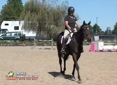 Jody demonstrates how to teach a horse to turn if halting and standing still is too difficult, and explains why she teaches this as a rein aid rather than a leg aid at this point in the training. by Dressage Today Online