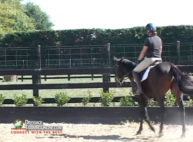 Jody discusses the flight response and tension and the physiological reasons for training by riding rather than using the longe line. by Dressage Today Online