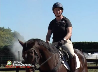 Jody Hartstone continues her series of retraining the off the track Thoroughbred with training for the trot and canter. by Dressage Today Online