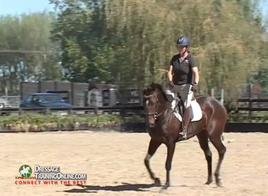 Jody rides a square using her reins for the turn, and shows how to handle her falling out on her outside shoulder. by Dressage Today Online
