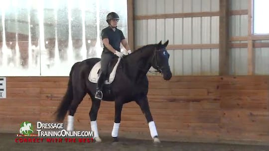 Instant Access to  Dr. M_ller begins this session by emphasizing that you are riding from the moment you get on. by Dressage Today Online, powered by Intelivideo