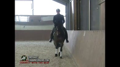 Catherine Haddad joins us with a six year old mare beginning in the working trot. by Dressage Today Online