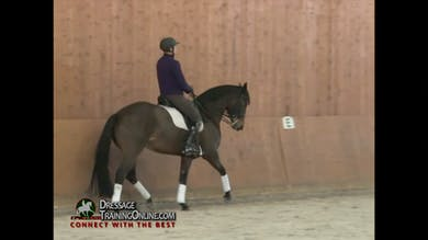 The next exercise is shoulder in, with an emphasis on getting the shoulders off the ground. by Dressage Today Online