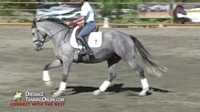 They continue with the canter, which they considered her best gait. by Dressage Today Online