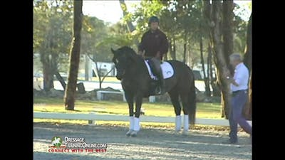 Christoph Hess - Driving Aids - Part 1 by Dressage Today Online