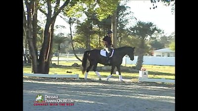 Christoph Hess - Driving Aids - Part 2 by Dressage Today Online