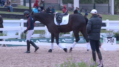 Steffen Peters - Suppleness & In Front of the Leg - Part 2 by Dressage Today Online