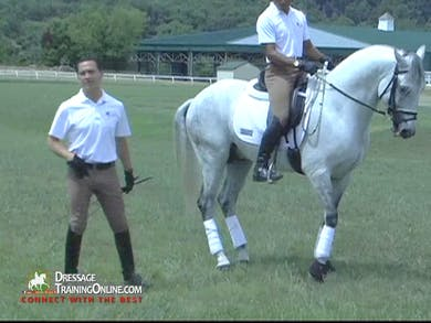 Vitor Silva - Piaffe and Passage, Part 2 by Dressage Today Online