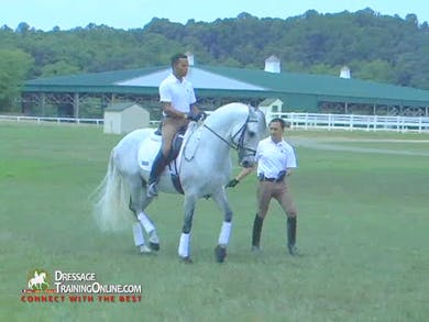 Vitor Silva - Piaffe and Passage, Part 3 by Dressage Today Online