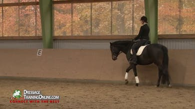 Nicole explains that The School of Legerete is applicable to all disciplines. Part 2 by Dressage Today Online
