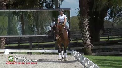 Chrissa talks about how she developed the trot to get more swing with connection through his back. - Part 3 by Dressage Today Online