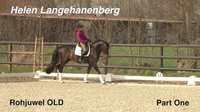 Helen Langehanenberg joins us with Rohjuwel OLD, a 10 year old competing at the S level. - Part 1 by Dressage Today Online