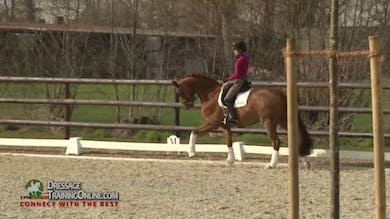 Helen reviews how important it is to keep the horse on a straight line when starting the multiple changes on the long diagonal. - Part 2 by Dressage Today Online