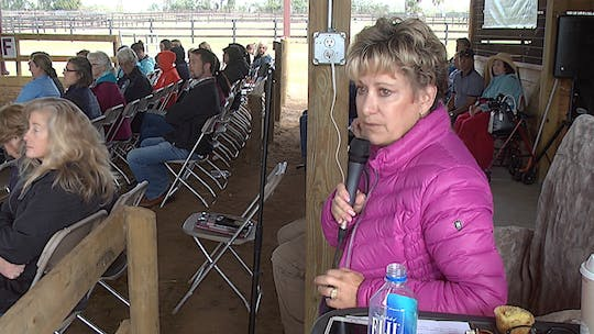 Instant Access to Janet Foy - Dressage Through the Levels - Part 1 - Introduction by Dressage Today Online, powered by Intelivideo